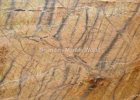 Rain forest gold brown marble and stone