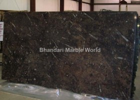 brown fossil marble